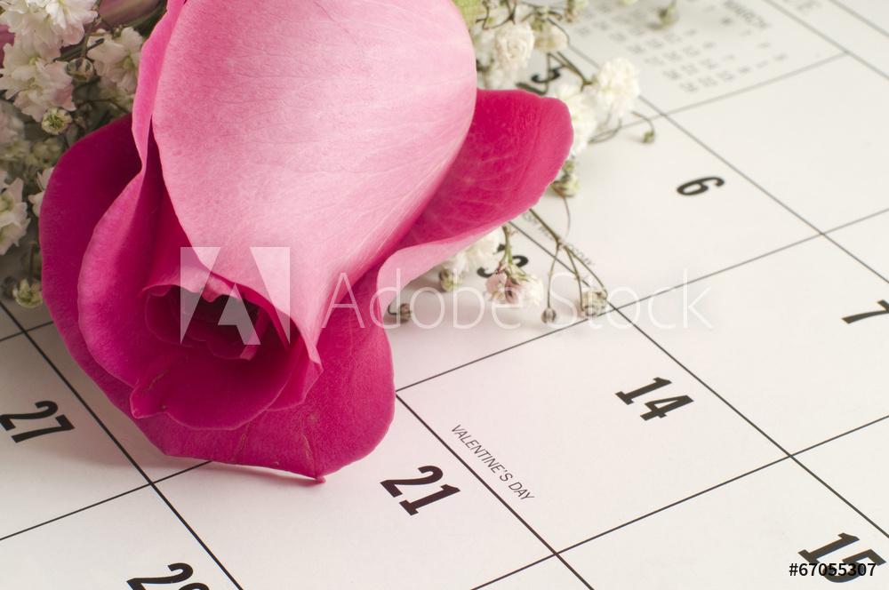 Rose on calendar